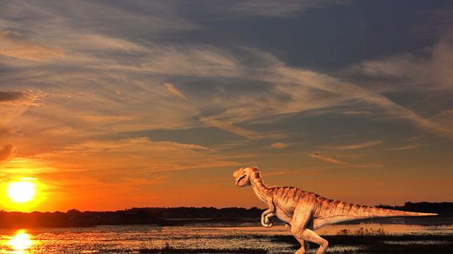 Spåren Av Dinosauriernas Tid I Sverige Utveckling Och Evolution