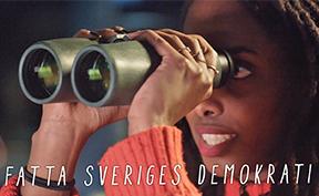 Fatta Sveriges demokrati